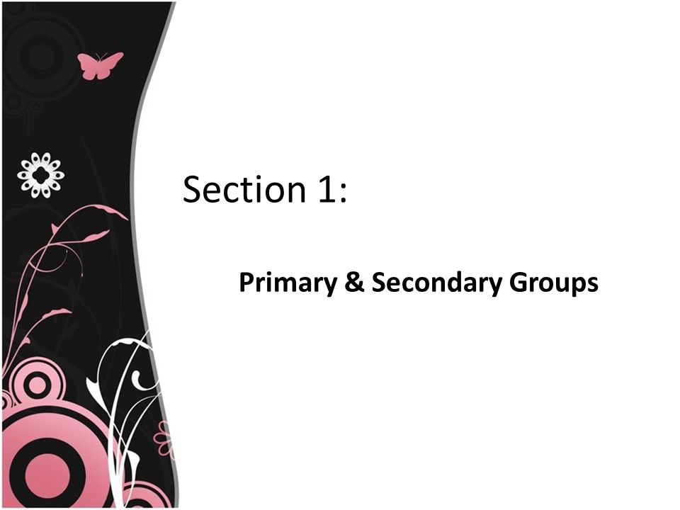 Section 1: Primary & Secondary Groups