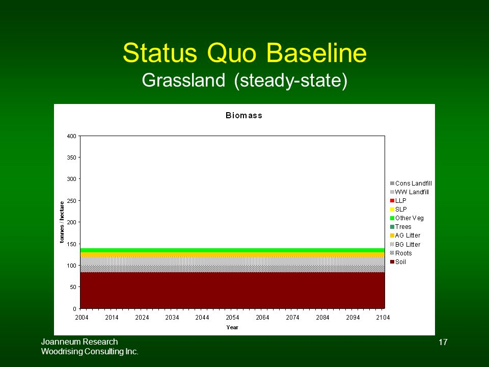 Joanneum Research Woodrising Consulting Inc. 17 Status Quo Baseline Grassland (steady-state)