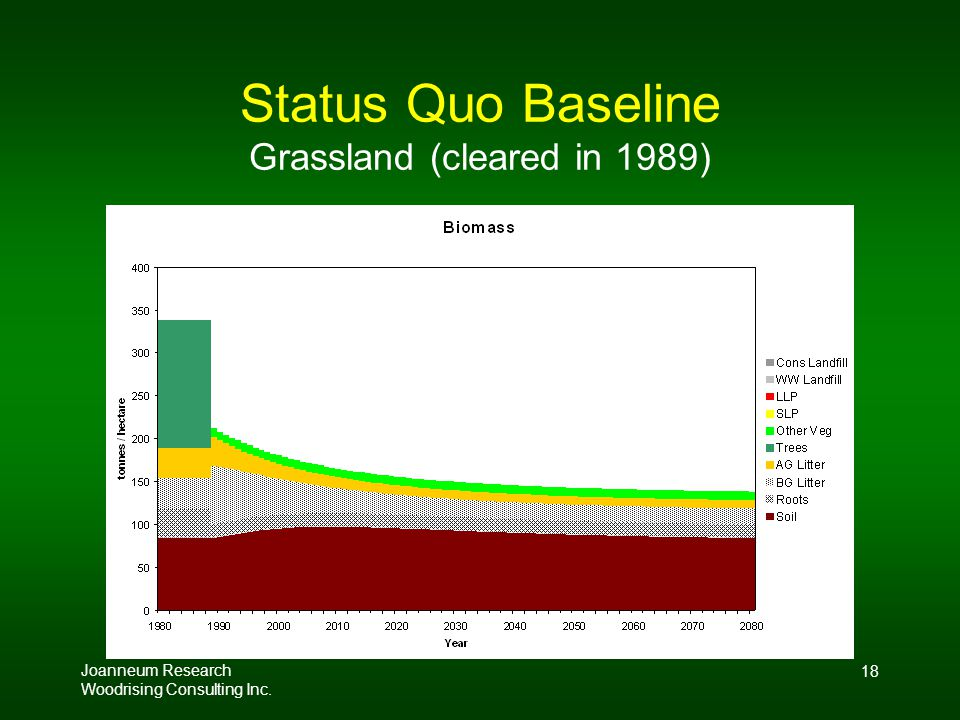 Joanneum Research Woodrising Consulting Inc. 18 Status Quo Baseline Grassland (cleared in 1989)