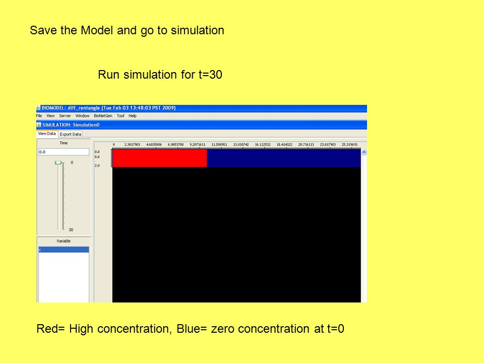 Save the Model and go to simulation Run simulation for t=30 Red= High concentration, Blue= zero concentration at t=0