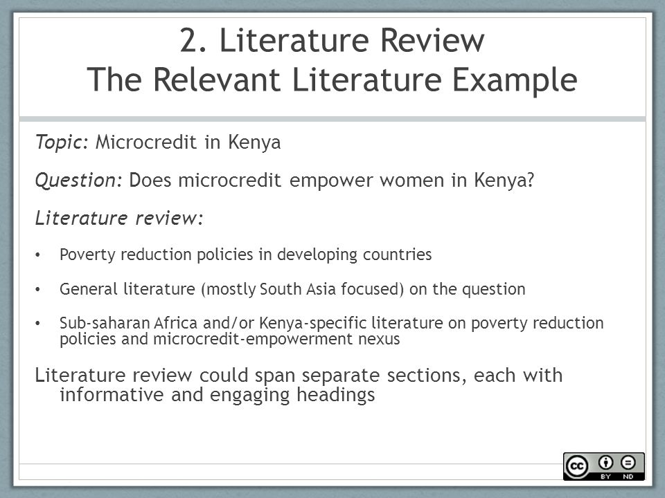 Sample Of Literature Review Paper Apreender