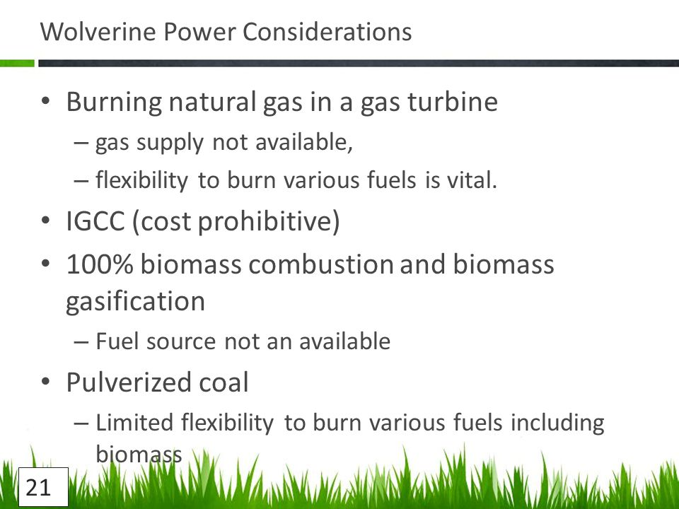 Wolverine Power Considerations Burning natural gas in a gas turbine – gas supply not available, – flexibility to burn various fuels is vital.