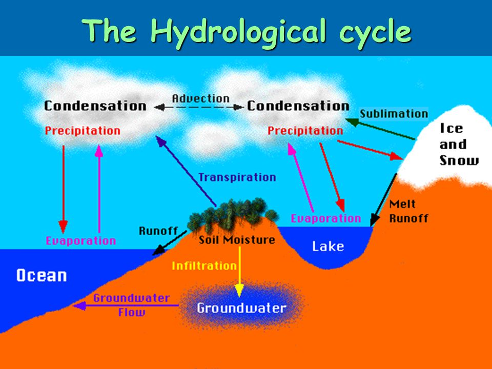 the hydrological cycle higher geography the hydrosphere    ppt    what is the hydrological cycle  the hydrological cycle is the system which describes the distribution
