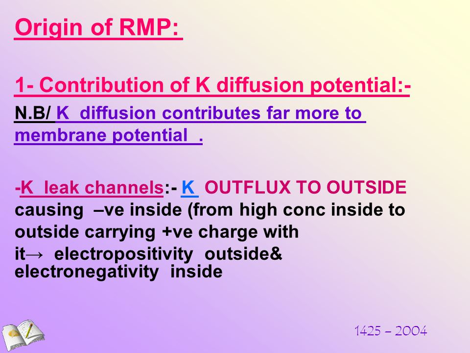1425 – 2004 Origin of RMP: 1- Contribution of K diffusion potential:- N.B/ K diffusion contributes far more to membrane potential.