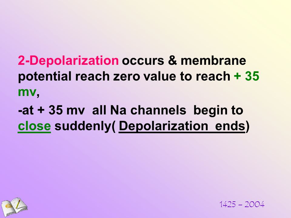 1425 – Depolarization occurs & membrane potential reach zero value to reach + 35 mv, -at + 35 mv all Na channels begin to close suddenly( Depolarization ends)