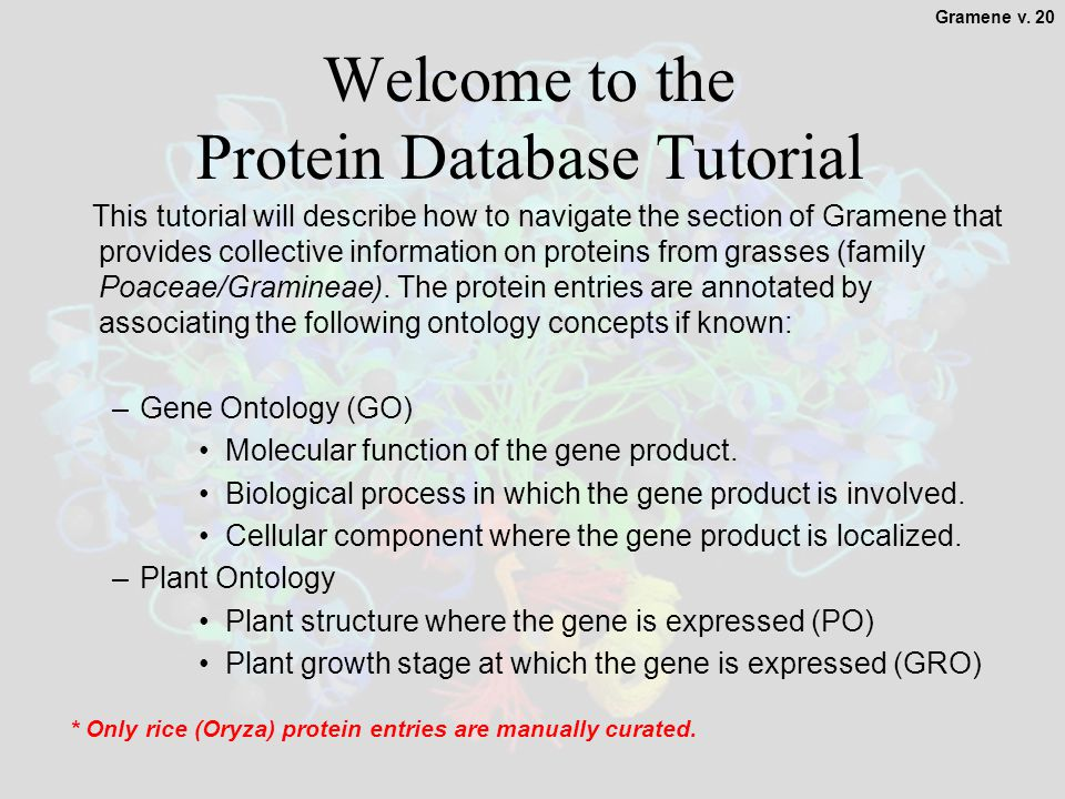 1 Welcome to the Protein Database Tutorial This tutorial will describe how to navigate the section of Gramene that provides collective information on proteins from grasses (family Poaceae/Gramineae).
