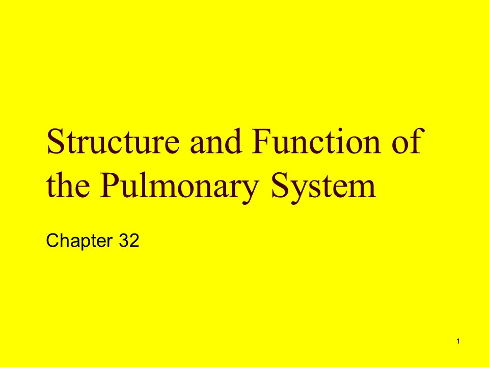 1 Structure and Function of the Pulmonary System Chapter 32