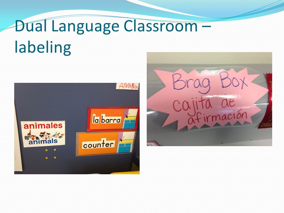 Dual Language Classroom – labeling