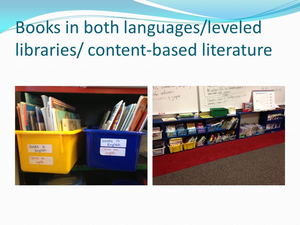 Books in both languages/leveled libraries/ content-based literature