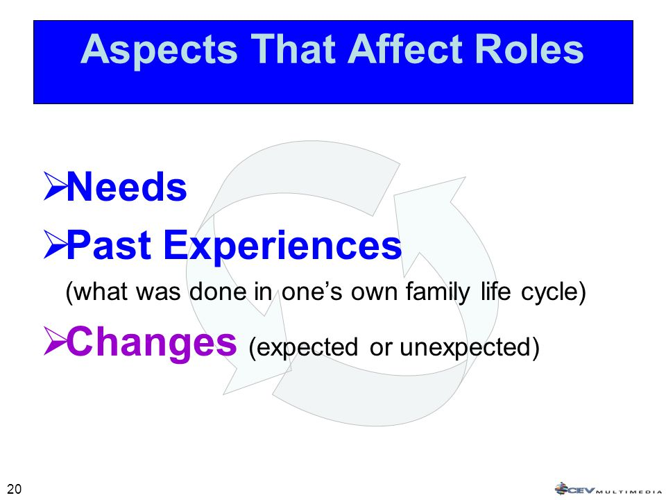 20 Aspects That Affect Roles  Needs  Past Experiences (what was done in one's own family life cycle)  Changes (expected or unexpected)