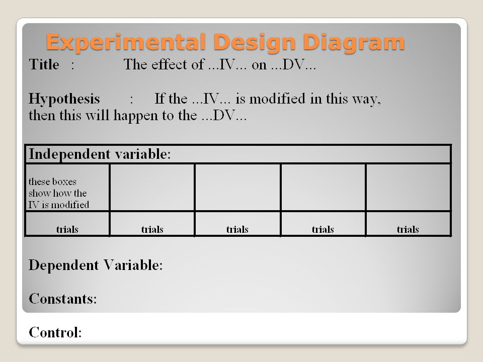 experimental design and science designing an experiment ppt  : experimental design diagram - findchart.co