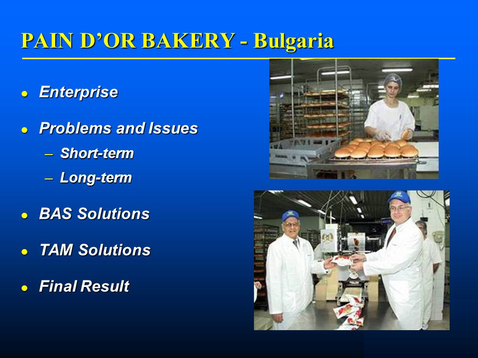    PAIN D'OR BAKERY - Bulgaria Enterprise Enterprise Problems and Issues Problems and Issues –Short-term –Long-term BAS Solutions BAS Solutions TAM Solutions TAM Solutions Final Result Final Result