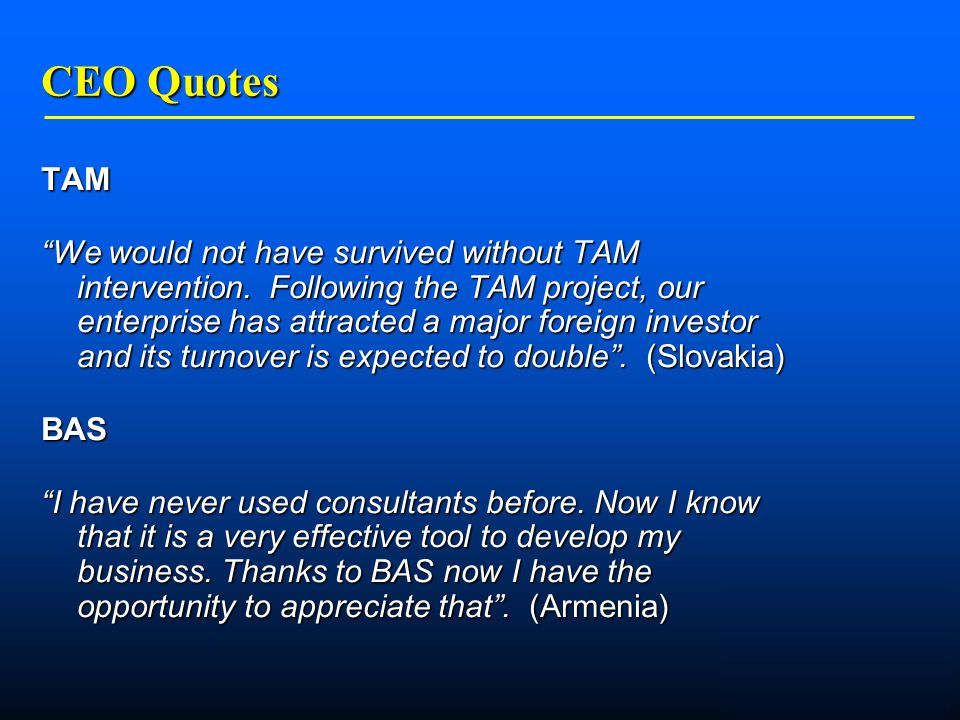    CEO Quotes TAM We would not have survived without TAM intervention.