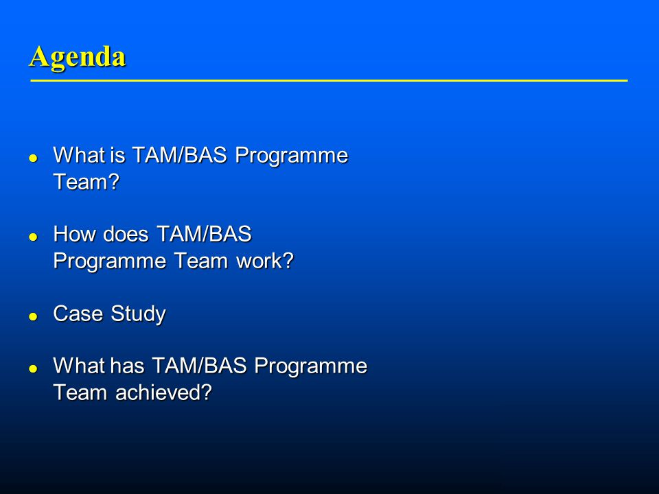    Agenda What is TAM/BAS Programme Team. What is TAM/BAS Programme Team.