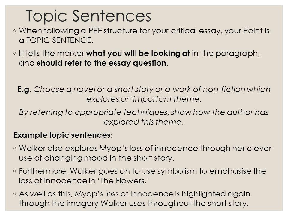 short story fiction essay