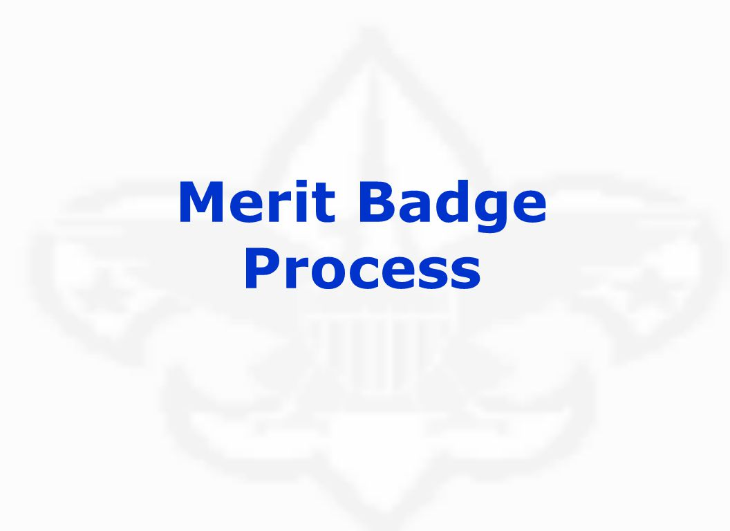 Merit Badge Process Hightower Trail District, Atlanta Area Council, Boy Scouts of America Jeff Glaze and Paul Porwoll (08/2004)