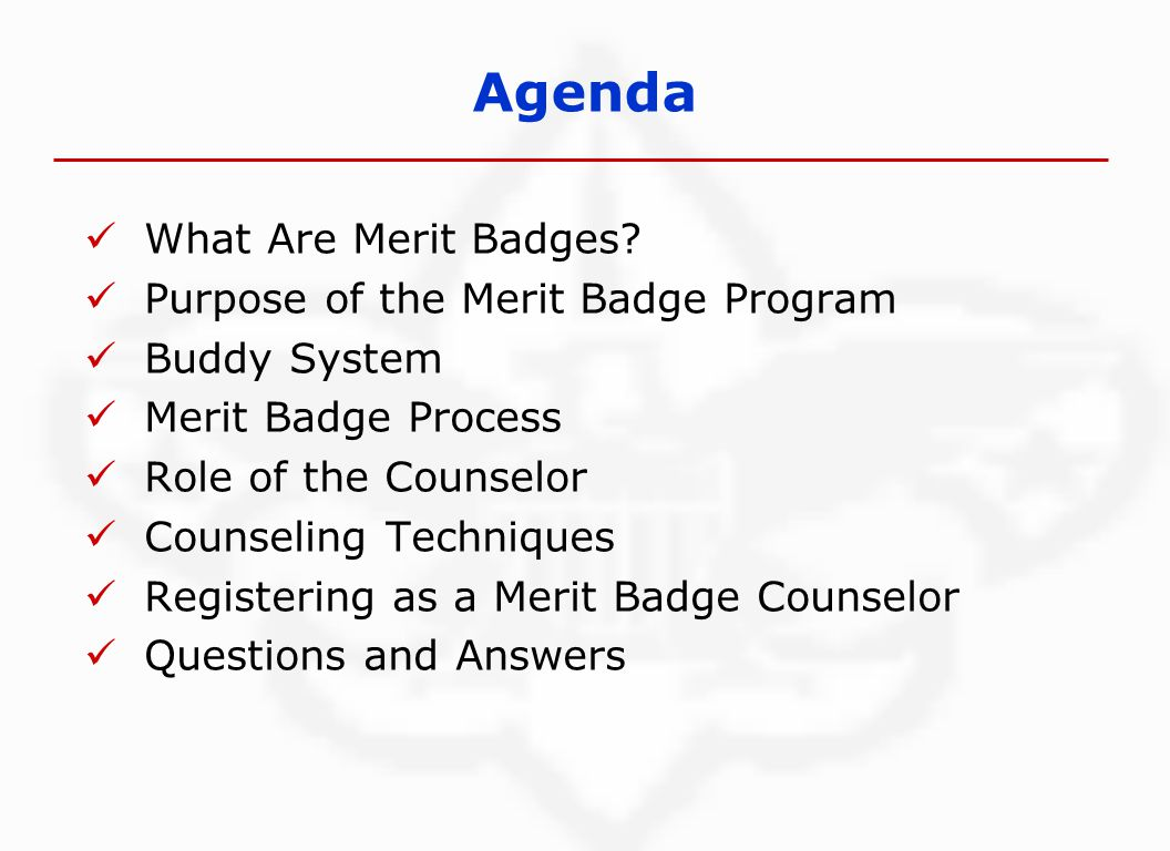 Agenda What Are Merit Badges.
