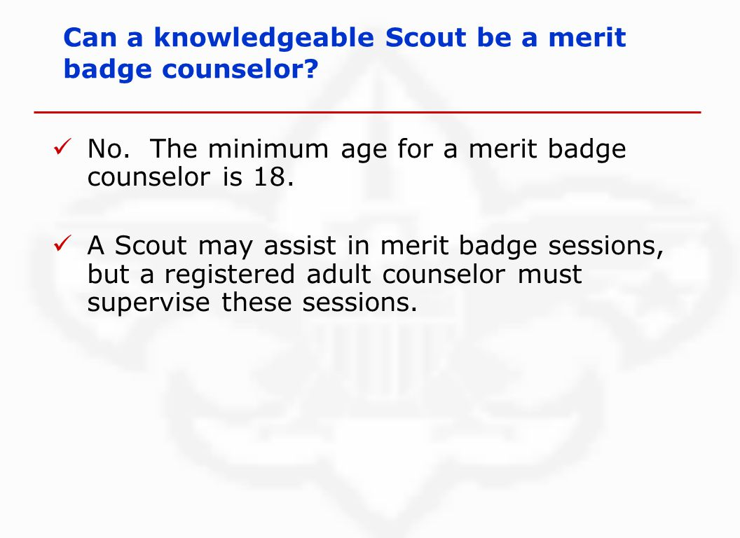 No. The minimum age for a merit badge counselor is 18.