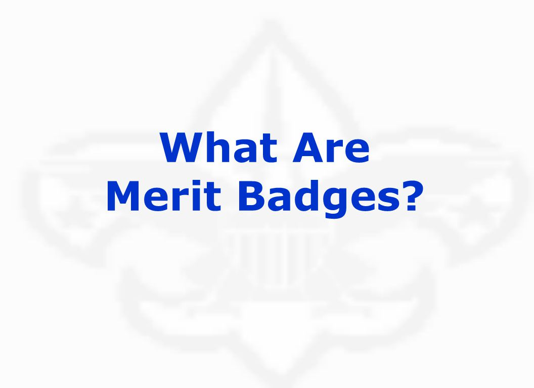 What Are Merit Badges.