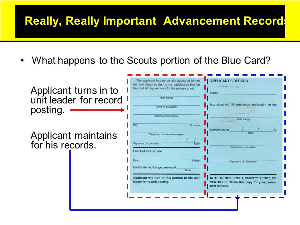 Really, Really Important Advancement Records What happens to the Scouts portion of the Blue Card.