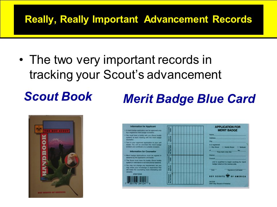 Really, Really Important Advancement Records The two very important records in tracking your Scout's advancement Scout Book Merit Badge Blue Card