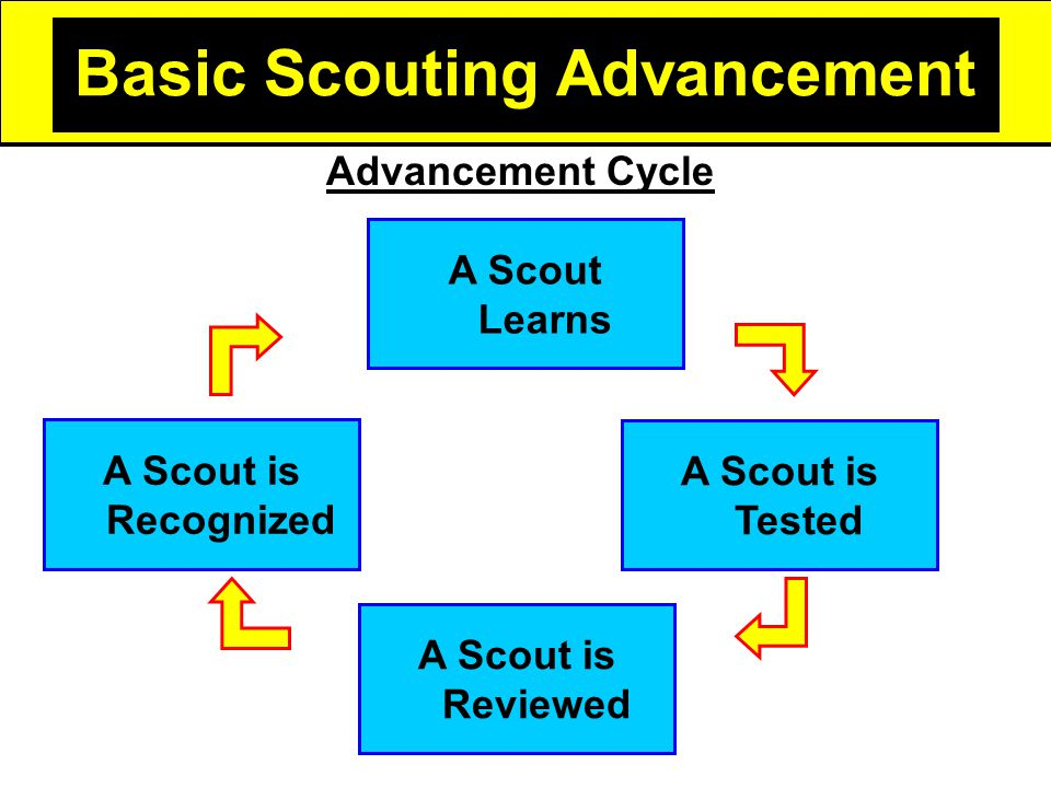 Basic Scouting Advancement A Scout is Tested A Scout is Reviewed A Scout is Recognized Advancement Cycle A Scout Learns