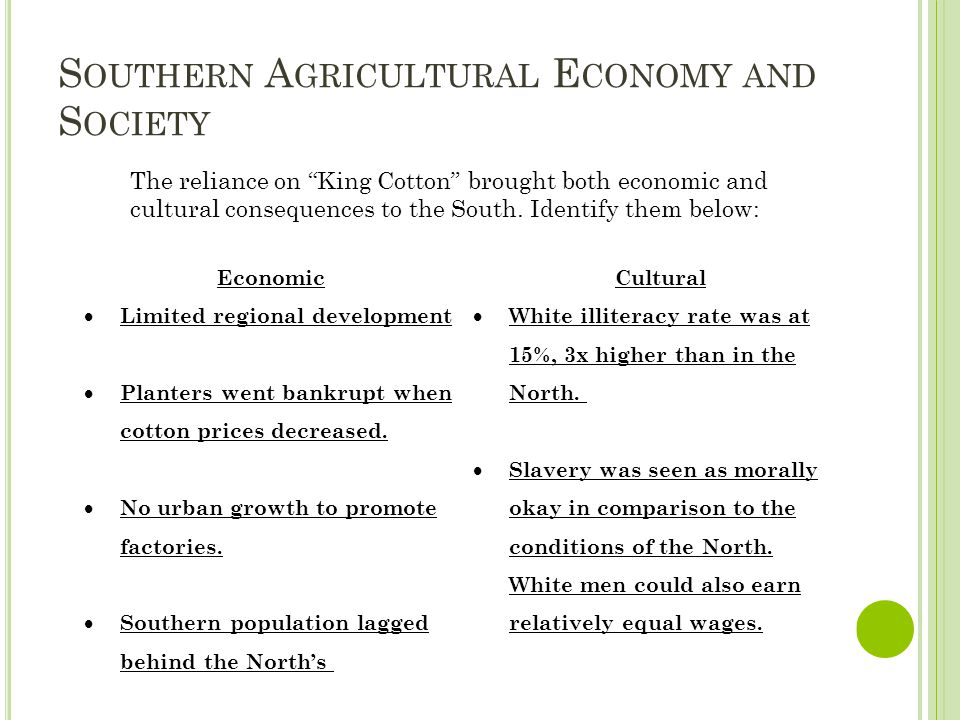 S OUTHERN A GRICULTURAL E CONOMY AND S OCIETY Economic  Limited regional development  Planters went bankrupt when cotton prices decreased.