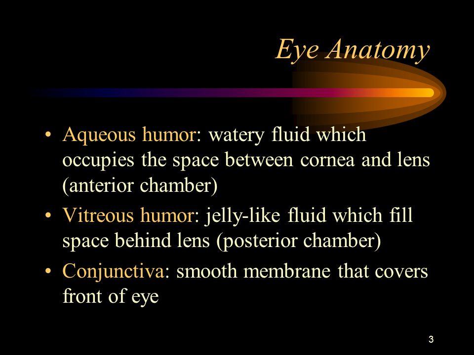 1 Eye Injuries Temple College EMS Professions. 2 Eye Anatomy ...