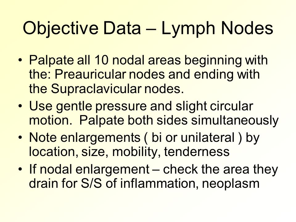 Objective Data – Lymph Nodes Palpate all 10 nodal areas beginning with the: Preauricular nodes and ending with the Supraclavicular nodes.