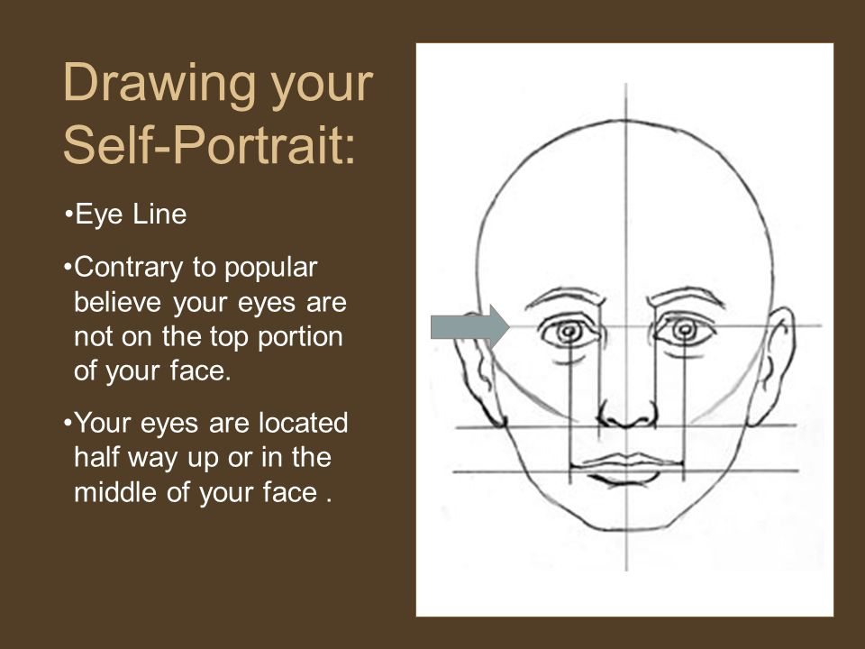 Drawing your Self-Portrait: Contrary to popular believe your eyes are not on the top portion of your face.