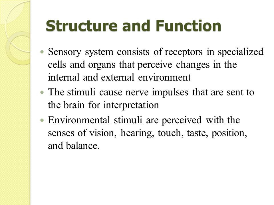 sensory organs and their functions The human sense organs contain receptors that relay information through sensory neurons to the appropriate the five sense organs in human beings the sense.