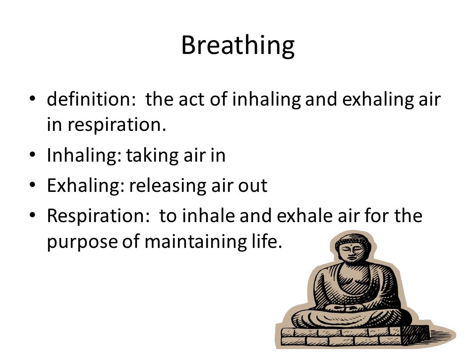 Breathing Definition: The Act Of Inhaling And Exhaling Air In Respiration.