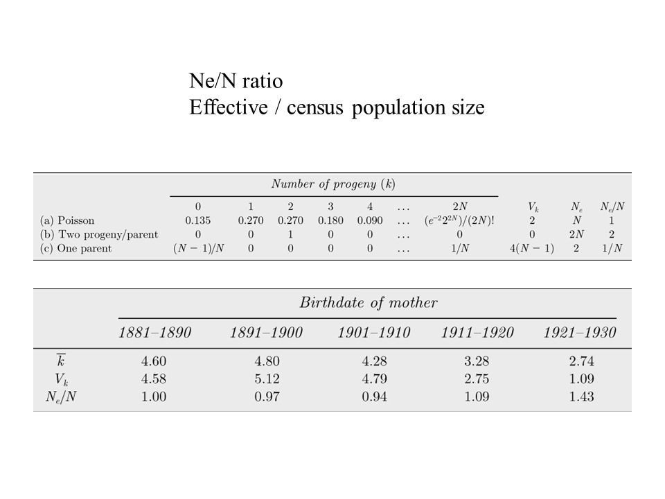 Ne/N ratio Effective / census population size