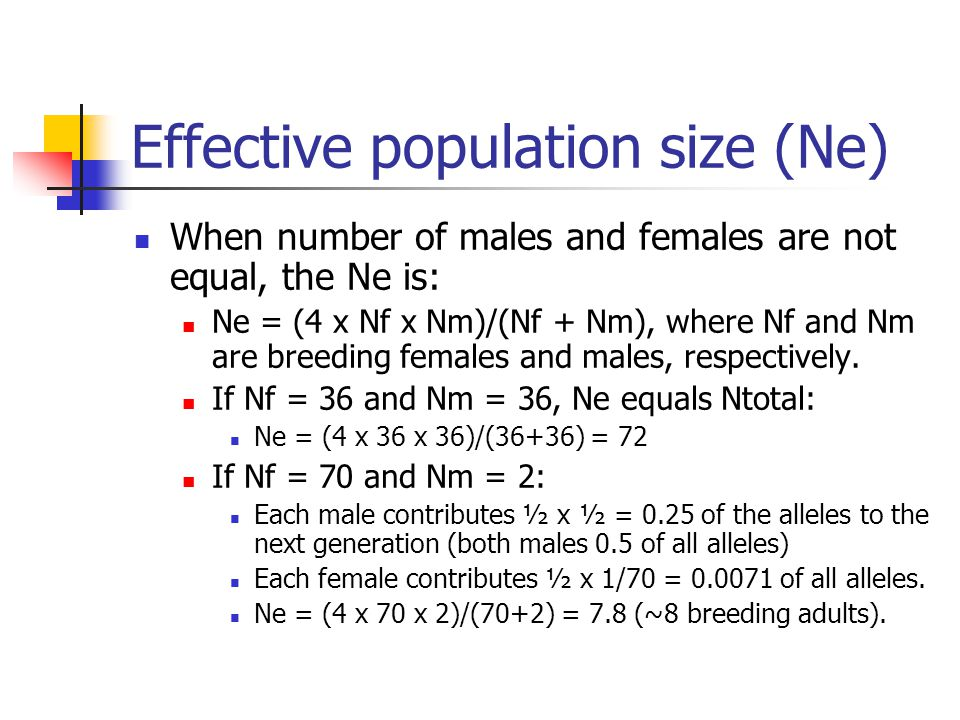 Effective population size (Ne) When number of males and females are not equal, the Ne is: Ne = (4 x Nf x Nm)/(Nf + Nm), where Nf and Nm are breeding females and males, respectively.
