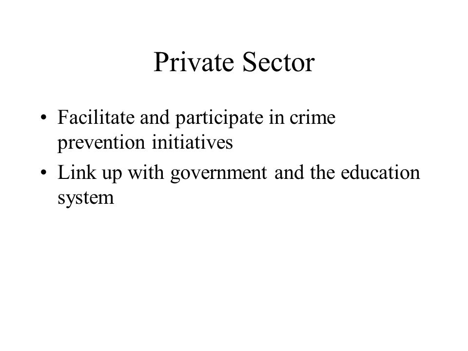 Private Sector Facilitate and participate in crime prevention initiatives Link up with government and the education system