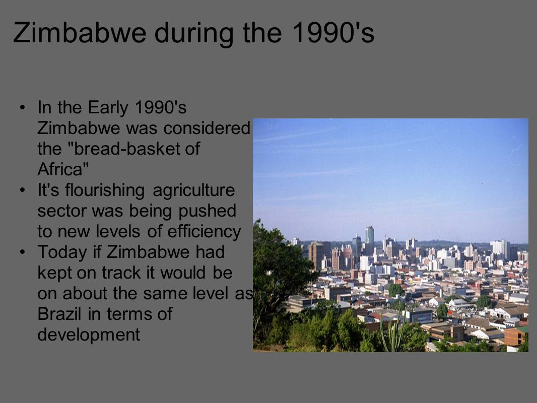 Zimbabwe during the 1990 s In the Early 1990 s Zimbabwe was considered the bread-basket of Africa It s flourishing agriculture sector was being pushed to new levels of efficiency Today if Zimbabwe had kept on track it would be on about the same level as Brazil in terms of development