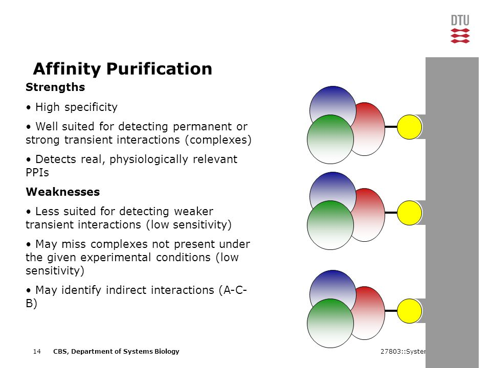 27803::Systems Biology14CBS, Department of Systems Biology Affinity Purification Strengths High specificity Well suited for detecting permanent or strong transient interactions (complexes) Detects real, physiologically relevant PPIs Weaknesses Less suited for detecting weaker transient interactions (low sensitivity) May miss complexes not present under the given experimental conditions (low sensitivity) May identify indirect interactions (A-C- B)