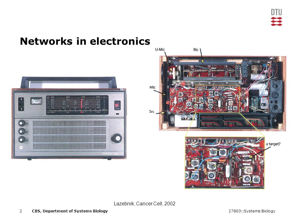 27803::Systems Biology2CBS, Department of Systems Biology Networks in electronics Lazebnik, Cancer Cell, 2002