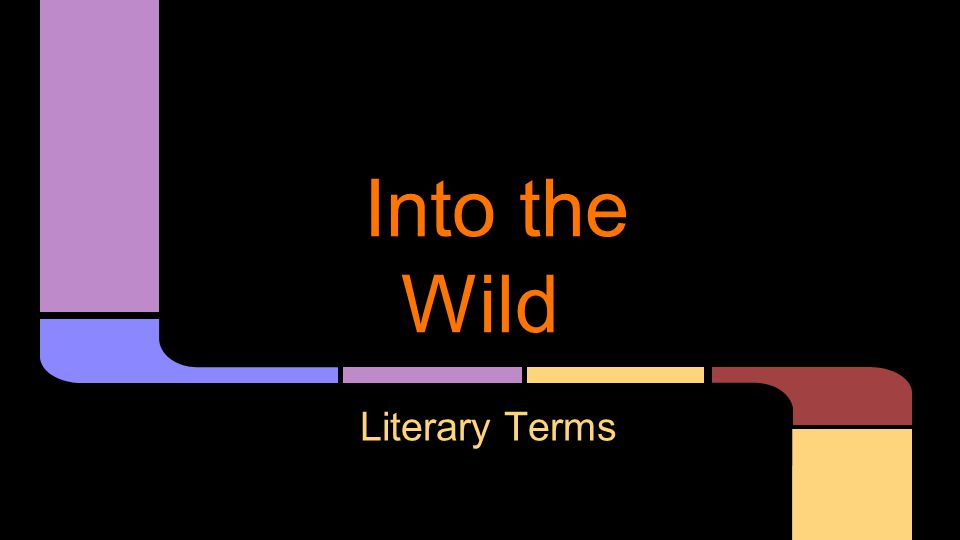 Into the Wild Literary Terms