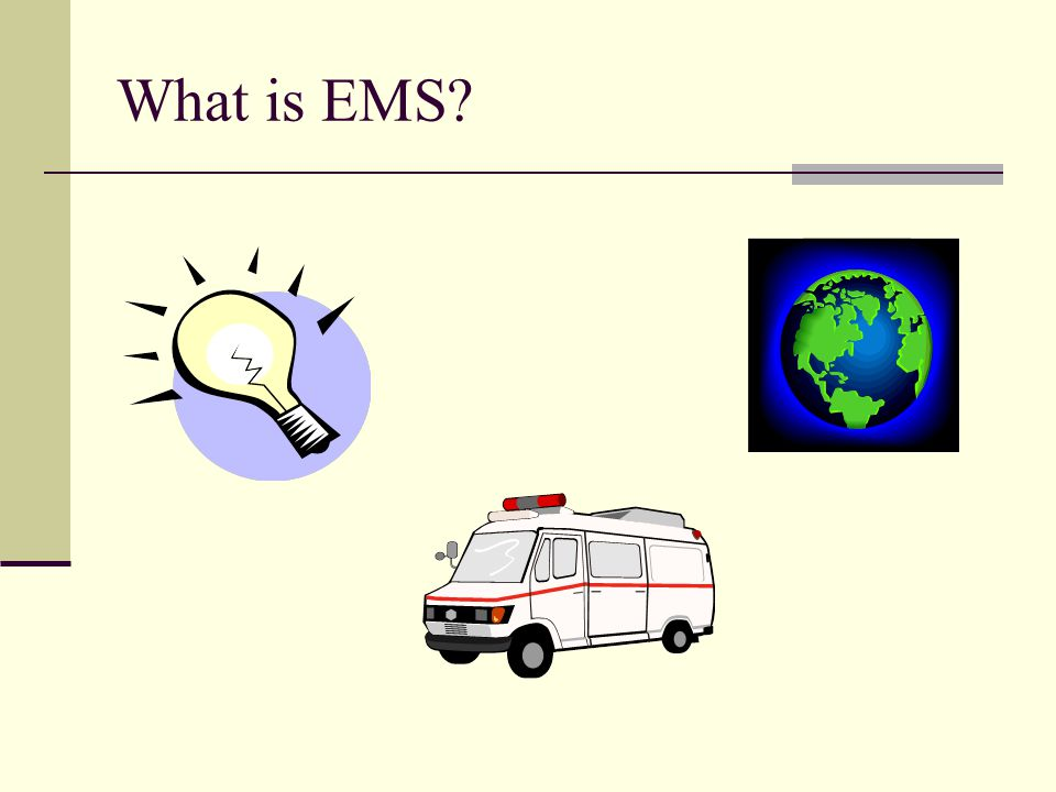 What is EMS