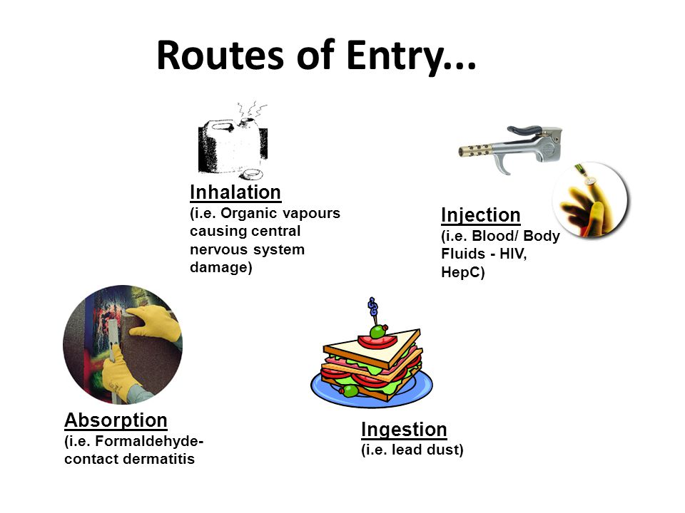 L 7 Routes of Entry... Inhalation (i.e.