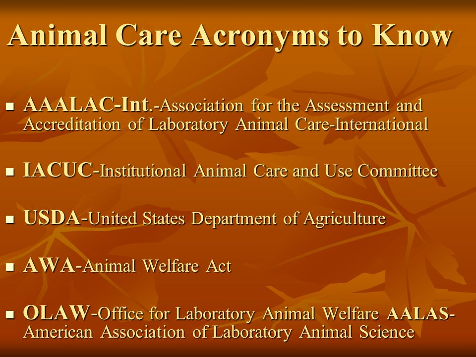 Animal Care Acronyms to Know AAALAC-Int.