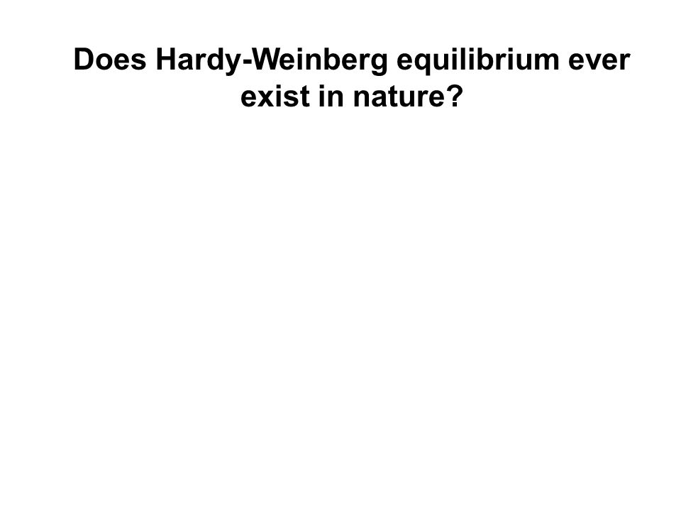Does Hardy-Weinberg equilibrium ever exist in nature