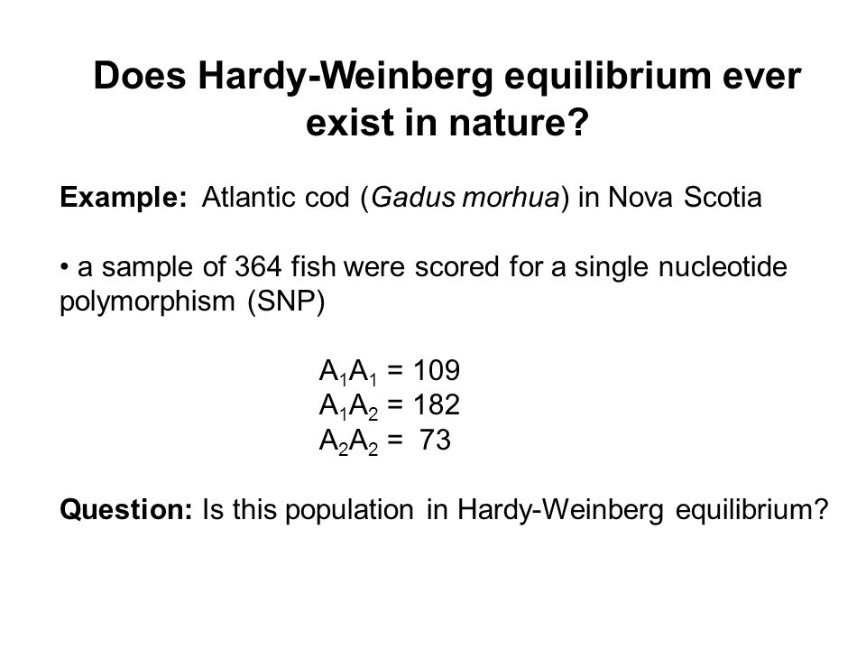 Does Hardy-Weinberg equilibrium ever exist in nature.