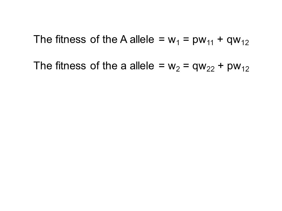 The fitness of the a allele = w 2 = qw 22 + pw 12