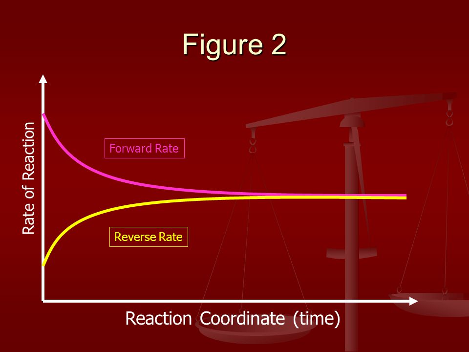 Figure 2 Reaction Coordinate (time) Rate of Reaction Forward Rate Reverse Rate