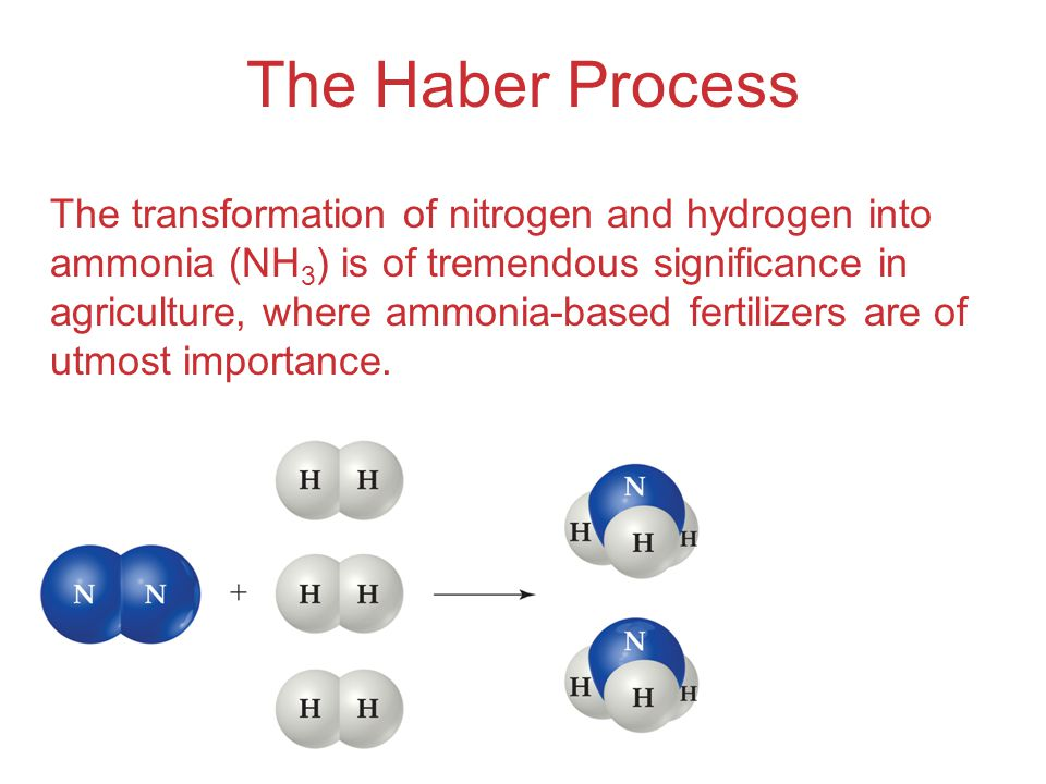 The Haber Process The transformation of nitrogen and hydrogen into ammonia (NH 3 ) is of tremendous significance in agriculture, where ammonia-based fertilizers are of utmost importance.