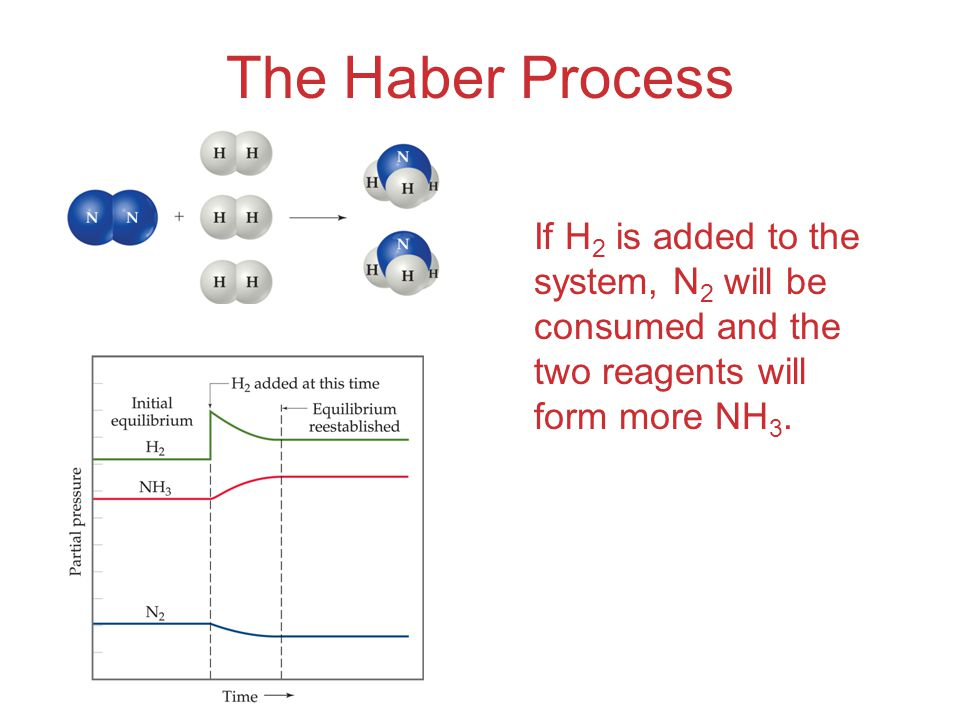 The Haber Process If H 2 is added to the system, N 2 will be consumed and the two reagents will form more NH 3.