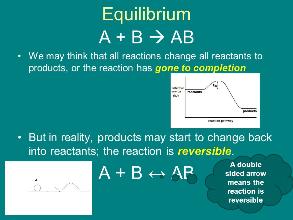 Equilibrium A + B  AB We may think that all reactions change all reactants to products, or the reaction has gone to completion But in reality, products may start to change back into reactants; the reaction is reversible.