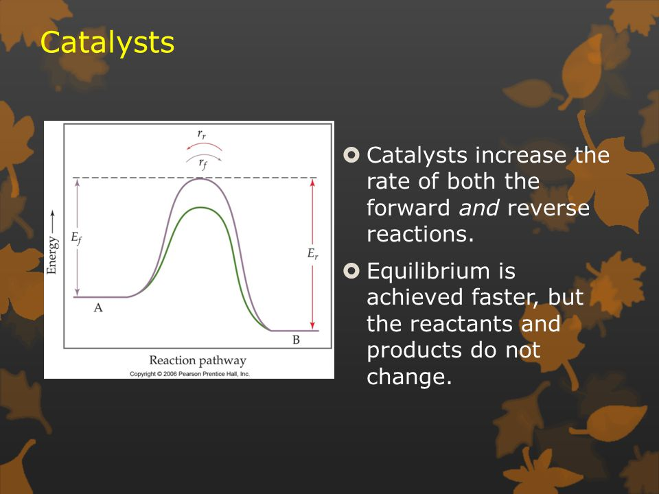 Catalysts  Catalysts increase the rate of both the forward and reverse reactions.